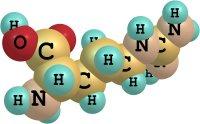 Walina - pobudzający aminokwas